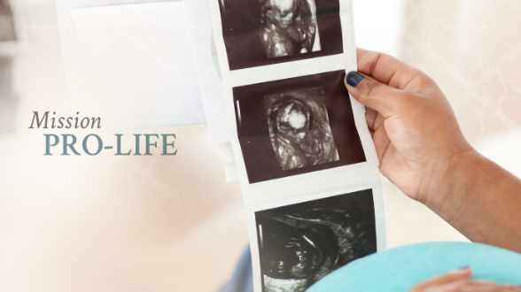 Join the New Evangelism Training Tailored for Pro-Life Ministry!
