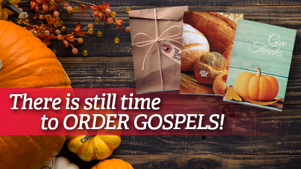 Order your Gospels by November 15 and request expedited shipping so that you will receive your Gospels in time for sharing!