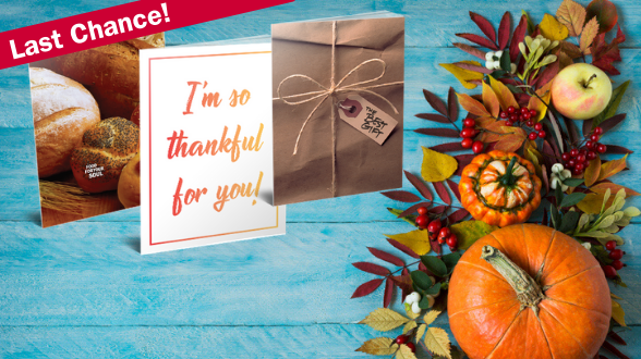 Last Chance: Select UPS Ground shipping until 11/20 to receive your Gospels by Thanksgiving!